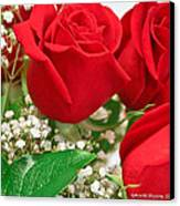 Red Roses With Baby's Breath Canvas Print by Ann Murphy