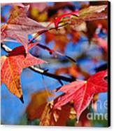 Reds Of Autumn Canvas Print by Kaye Menner