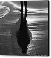 Reflection - Horseneck Beach Canvas Print by David Gordon