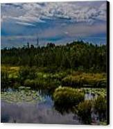 Reflection In The Swamp Canvas Print by Jason Brow