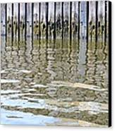 Reflection Of Fence  Canvas Print by Sonali Gangane