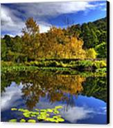 Reflections Canvas Print by Damian Morphou