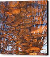 Reflections Canvas Print by Eric Rundle