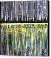 Reflections IIi Canvas Print by Dan Earle
