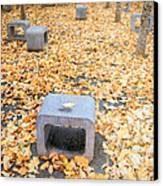 rest in fall IV Canvas Print