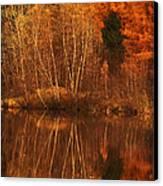 Restes D'automne Canvas Print by Aimelle