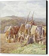 Resting In The Field  Canvas Print by Charles James Adams