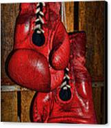 Retired Boxing Gloves Canvas Print by Paul Ward