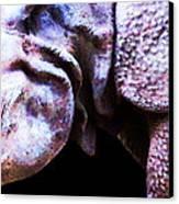 Rhino 2 - Buy Rhinoceros Art Prints Canvas Print