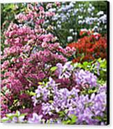 Rhododendron Garden Canvas Print