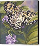 Rice Paper Butterfly Canvas Print by Lucie Bilodeau