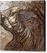 Ripper Van Winkle Canvas Print by Jeremy McHugh