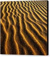Ripples Oregon Dunes National Recreation Area Canvas Print