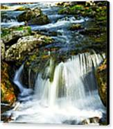 River Flowing Through Woods Canvas Print