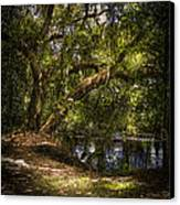 River Oak Canvas Print by Marvin Spates