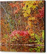 Riverbank Beauty Canvas Print by James Hammen