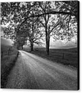 Road Not Traveled Canvas Print