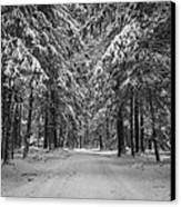 Road To Winter Canvas Print