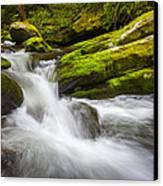 Roaring Fork Great Smoky Mountains National Park Cascade - Gatlinburg Tn Canvas Print by Dave Allen