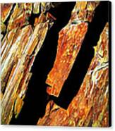 Rock Art 21 Canvas Print by ABeautifulSky Photography
