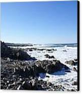 Rocky Beach Canvas Print by Barbara Snyder