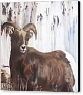 Rocky Mountain High Canvas Print by Sharon Burger