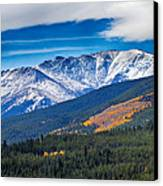 Rocky Mountains Independence Pass Canvas Print by James BO  Insogna