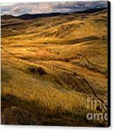 Rolling Hills Canvas Print by Robert Bales