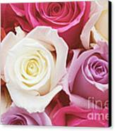 Romantic Rose Garden Canvas Print