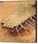 Roots Canvas Print by Paulo Zerbato