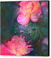 Rose 194 Canvas Print by Pamela Cooper