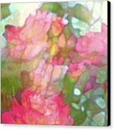 Rose 200 Canvas Print by Pamela Cooper