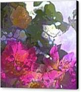 Rose 206 Canvas Print by Pamela Cooper