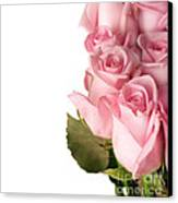 Rose Bouquet Canvas Print by Boon Mee