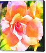 Rose On Canvas  Canvas Print by Cathie Tyler