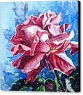 Rose Canvas Print by Zaira Dzhaubaeva