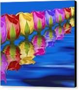 Roses Floating Canvas Print by Tom Mc Nemar