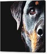 Rottie Love - Rottweiler Art By Sharon Cummings Canvas Print by Sharon Cummings
