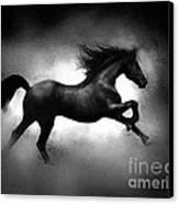 Running Horse Canvas Print by Robert Foster