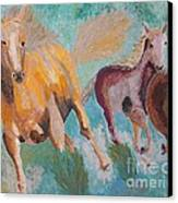 Running Horses  Canvas Print by Vicky Tarcau