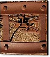 Rusted Deception Canvas Print