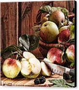 Rustic Apples Canvas Print by Amanda Elwell
