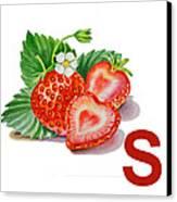 S Art Alphabet For Kids Room Canvas Print