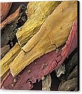 Saffron, Sem Canvas Print