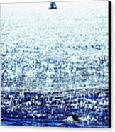 Sailboat And Swimmer Canvas Print by Brian D Meredith