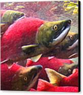 Salmon Run - Painterly Canvas Print