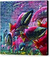 Salmon Run - Square - 2013-0103 Canvas Print