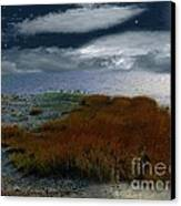Salt Marsh At The Edge Of The Sea Canvas Print by RC DeWinter