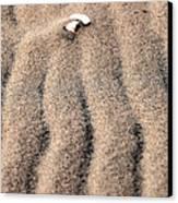 Sand Patterns II Canvas Print by John Rizzuto