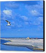 Sandbar Bliss Canvas Print